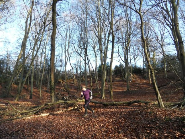 Ruth Holmes demonstrating the runnability of Burnham Beeches